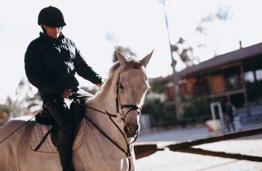 Sklep jeździecki – stacjonarny czy online?