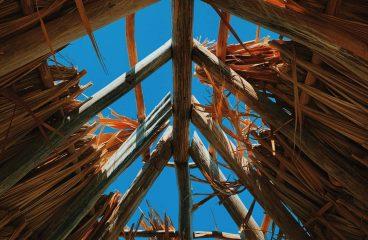 Drewno konstrukcyjne – jakie?