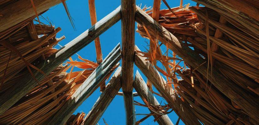 Drewno konstrukcyjne - jakie?